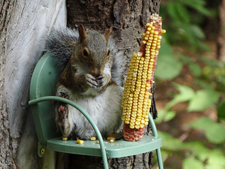 I like this chair, I can just relax and snack!