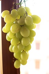 White Grapes are crack