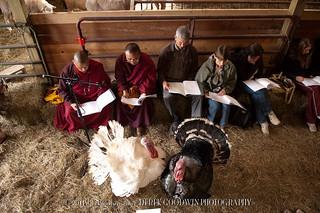 20061001_Blessing_Animals_0086.jpg
