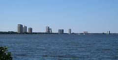 Tampa - Ballast Point Park - Bayshore Blvd Highrise Buildings