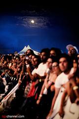 Ligabue @ Campovolo 2.0 - Reggio Emilia, 16 luglio 2011 (IMG_9796)