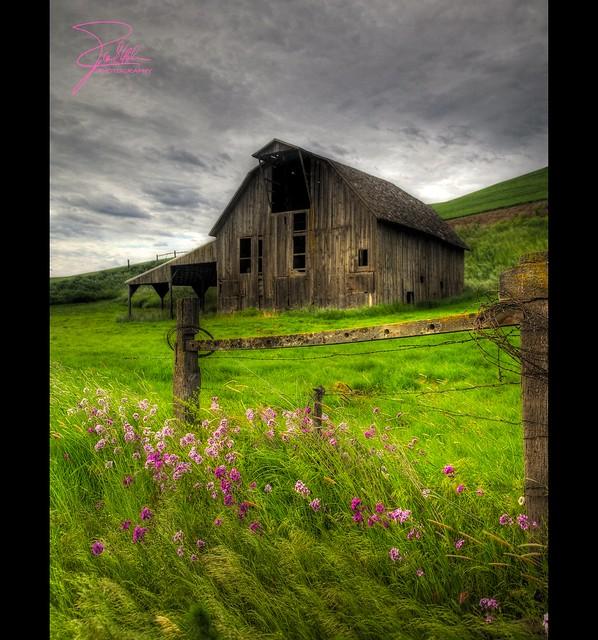 Palouse Barn Flickr Photo Sharing