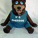 U.C. Riverside Scotty Bear Mascot Birthday Cake