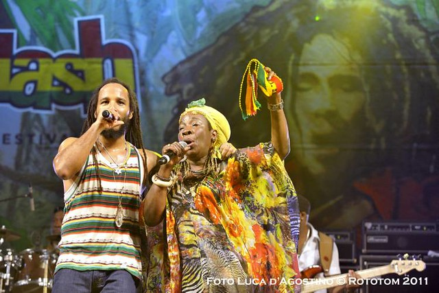 Bob Marley And The Wailers Soul Revolution