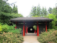 temple, pavilion, shinto shrine, chinese architecture, gazebo, shrine,