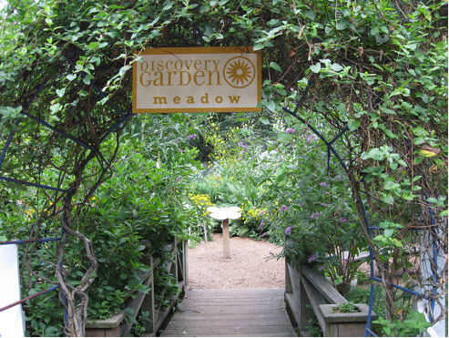 The main entrance to the Discovery Garden meadow overarches a wooden bridge. Photo by Ashley Gamell.