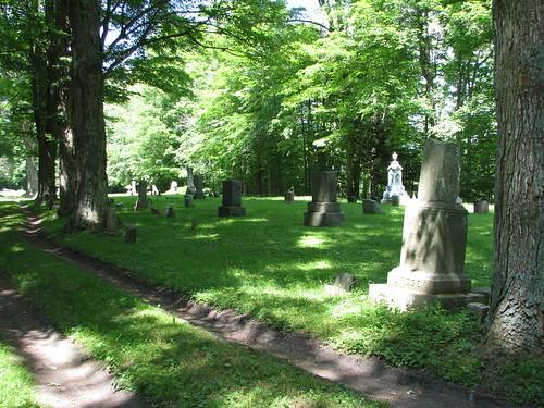 newyork genealogy gravestone chemungcounty hilltopcemetery breesport
