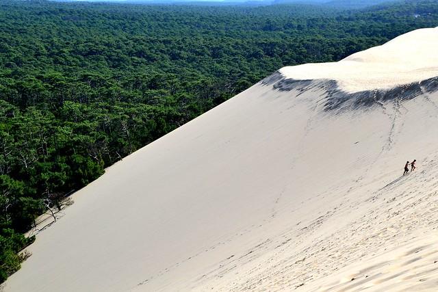 Dune Pilat nature