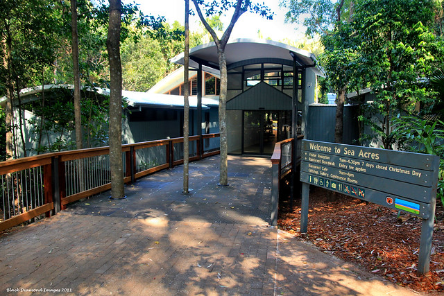 The New Sea Rainforest Centre and National Parks Admin. Building, Port Macquarie - Opened September 2011