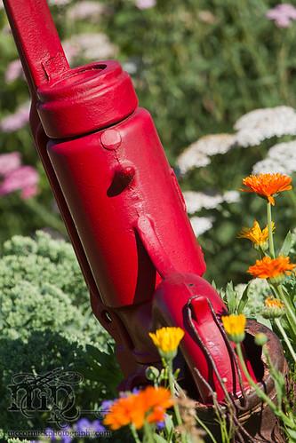 Acadia Valley B&B: Hand pump in garden [2 of 2]