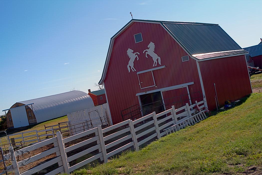 Acadia Valley B&B: Little red barn