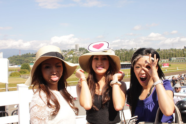 Thoroughbred 2011 | Hastings Racecourse