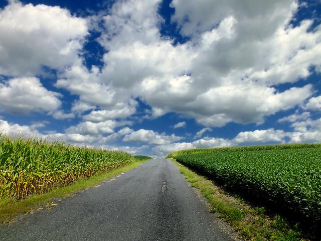 Lehigh Valley Farms 2 Flickr Photo Sharing