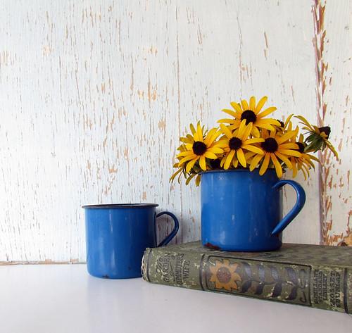 Vintage Enamelware Cups