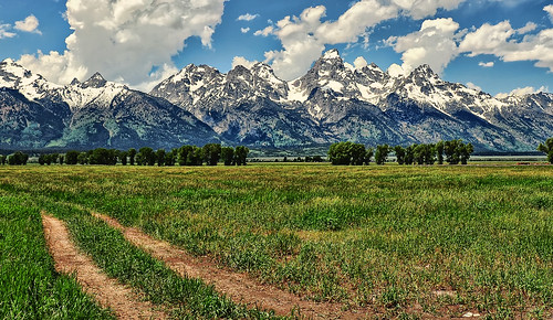 Tracks to the Tetons