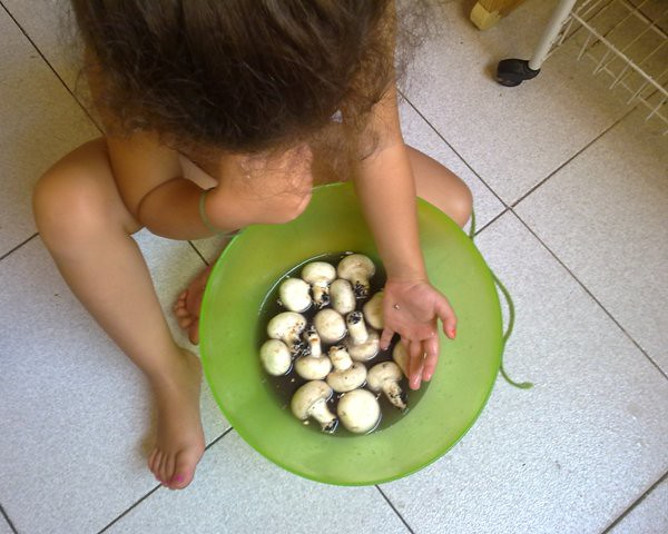 Ilse cocinera