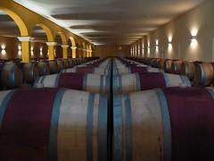 Oak barrels of Chateau Reverdi in Listrac de medoc (France 2011)