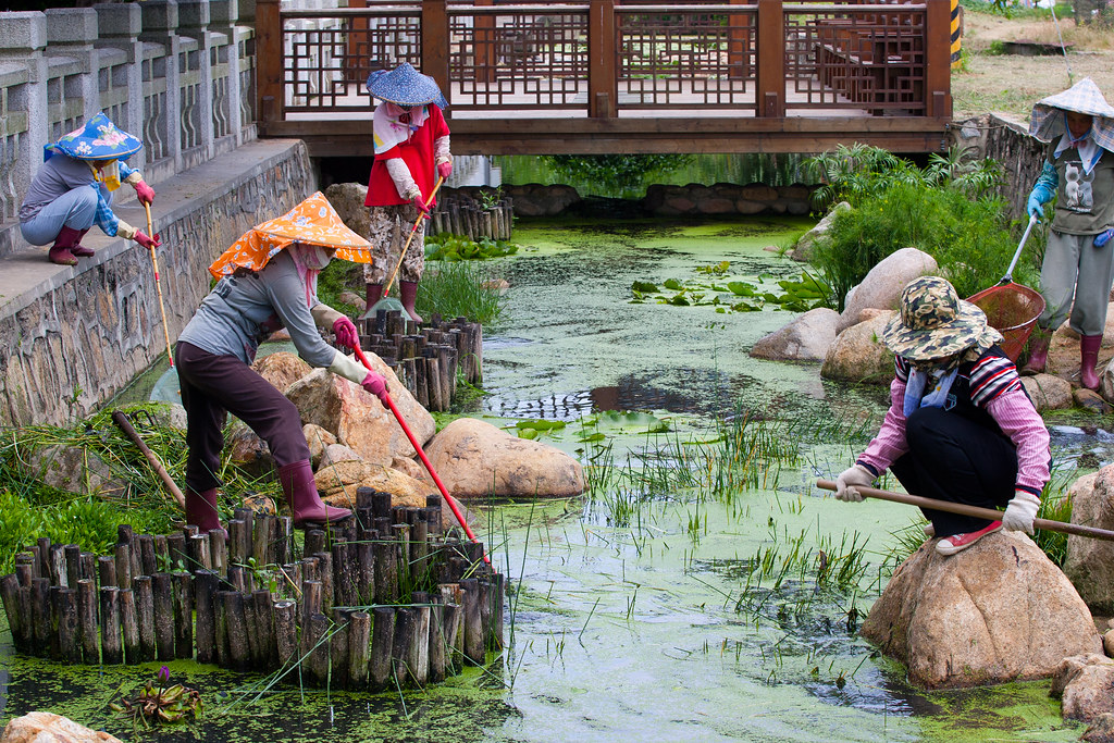 Women draining a creek in Kinmen Island, Taiwan