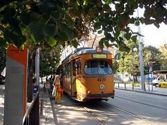 tram colours