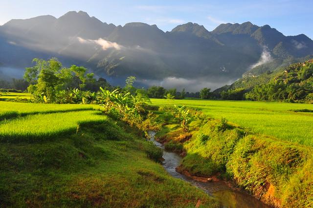 Mai Chau dalen