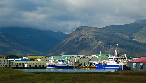Hofn Harbor
