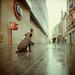 Zeiss Ikon Nettar 518/16 + Fuji Puppy 400 by Giu Behringer