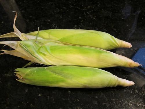 blue corn IMG_7739