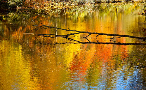 autumn fall nc nikon fallcolor unitedstates foliage blueridgemountains vr linvillefalls lr3 f3556g linvilleriver 18105mm d7000 18105mmf3556gvr adobelightroom3 appleaperture3