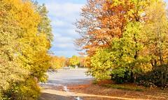 Der Herbst, der ist ein Malersmann