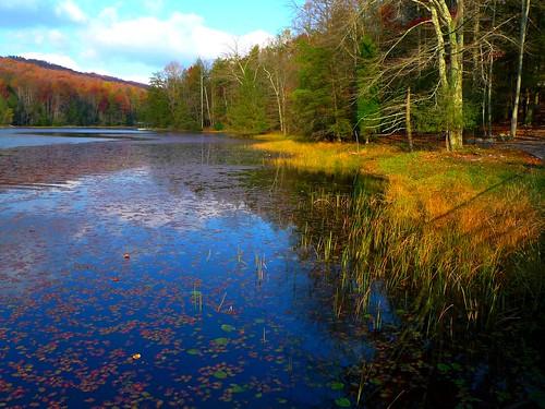 mountain lake bays picnik
