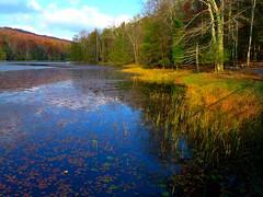 bays mountain lake