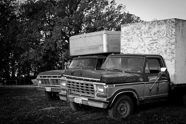 Ford Trucks Apple Pies Bald Eagles Gardens Of Eagan