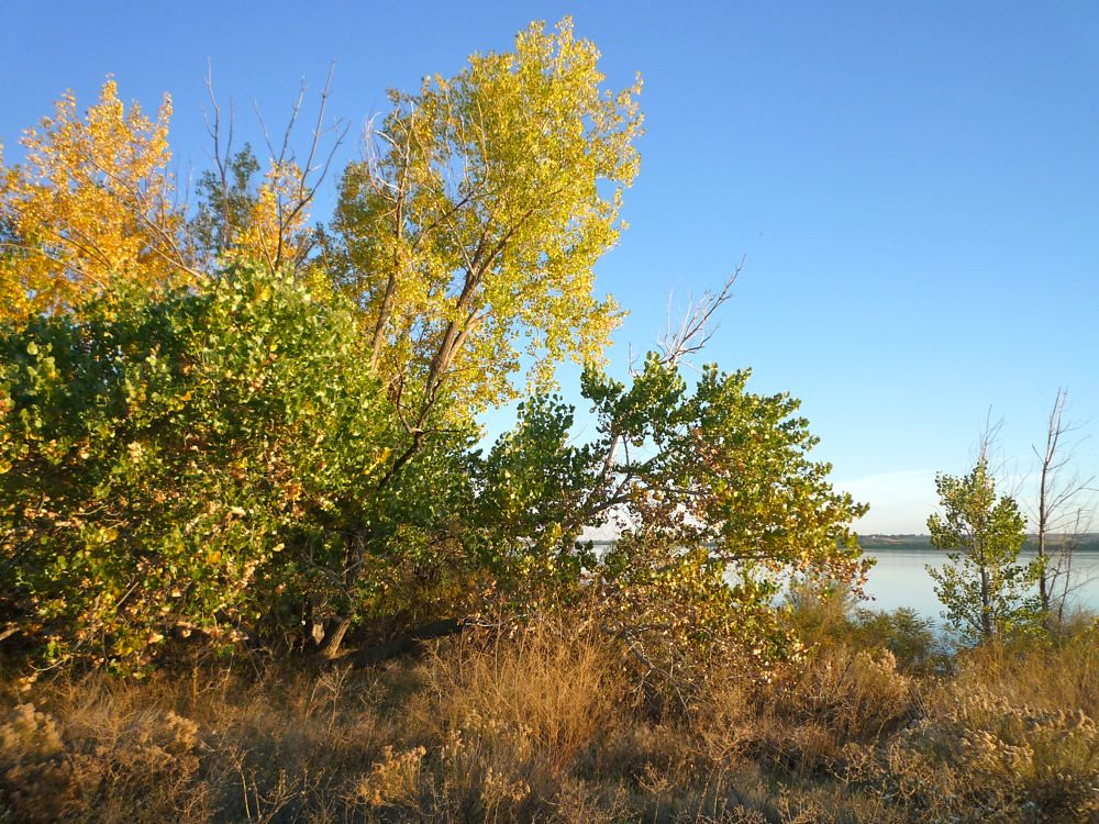 Hotels Near Deer Flat National Wildlilfe Refuge