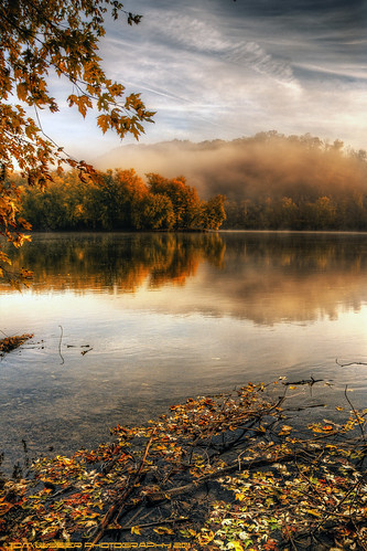 Autumn Morning Fog. Tom Lussier Photography. November 3, 2011. Submitted through the Virginia Flickr Group.