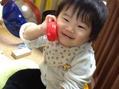 今朝の電話とらちゃん(2011/11/21)