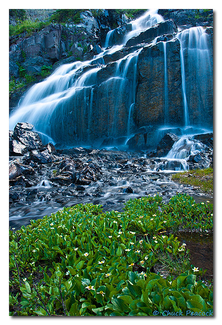 Green Lake Falls with Marigolds