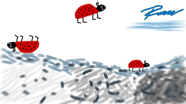 Käfer / bugs - #9