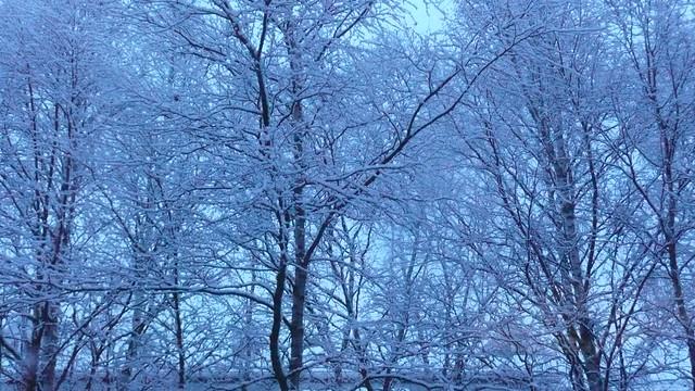 Snowing, snowing, snowing...