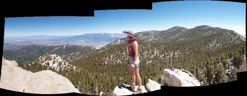 Marion Mountain Summit panorama
