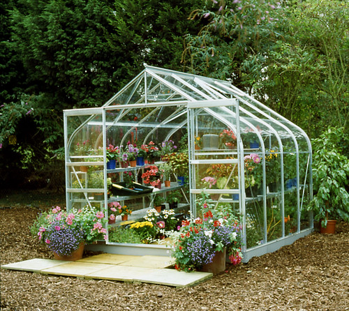 Greenhouse Halls Supreme 8x8 silver greenhouse