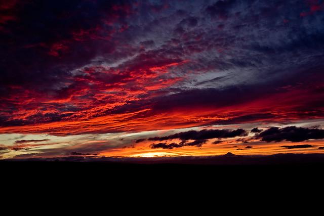 Desert Sunset - 17