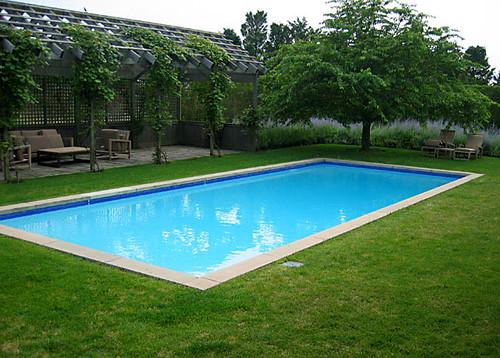Ozono para desinfectar piscinas diario ecologia for Ozono para piscinas