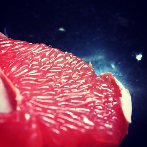 Carne de pomelo