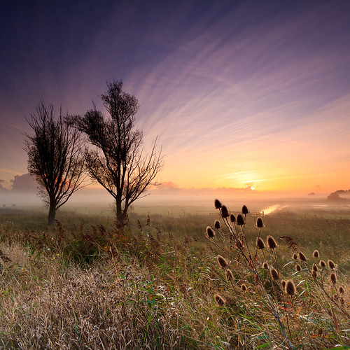 mist sunrise hardley