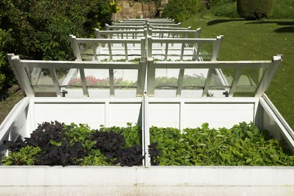 How to Maintain a Cold Frame Greenhouse