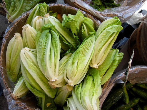 10 Vegetables You Can Regrow from Kitchen Scrap