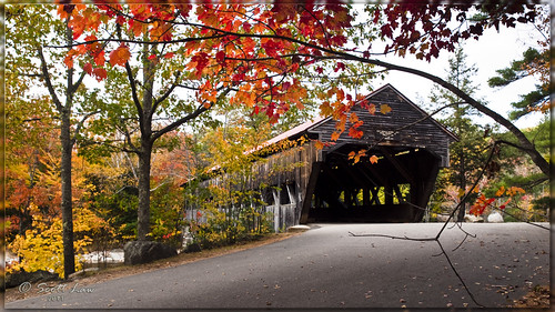 bridge autumn usa fall structures newhampshire albany coveredbridge
