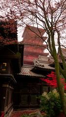 Tour Japonaise Laeken 2