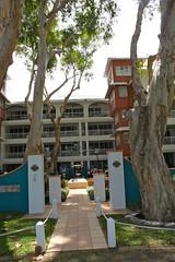 Palm Cove_1