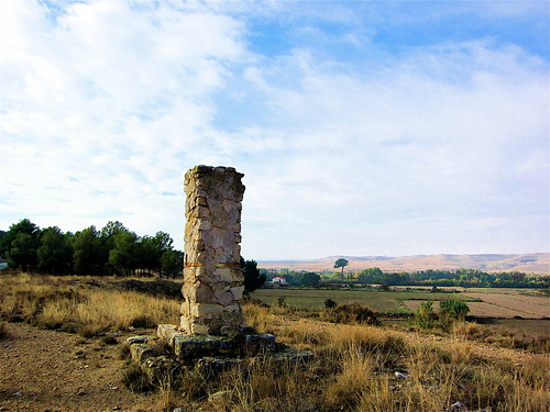 PAIRON, CINCO OLIVAS II